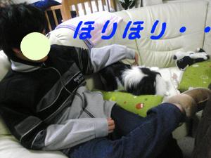 Image232_3