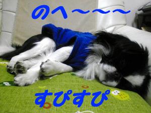Image357_2