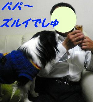 Image377