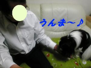 Image473