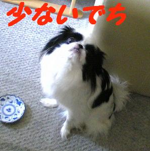 Image774