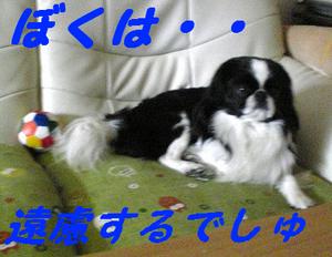 Image787