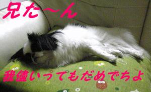 Image789