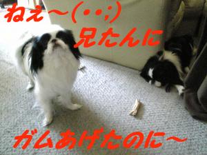 Image794