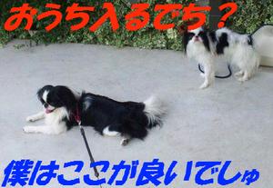 100729_120417_2