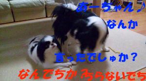 100903_164627