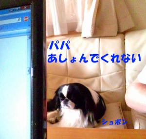 110509_092012